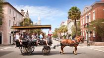 Charleston Carriage Ride, Charleston, Family Friendly Tours & Activities