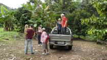 Private Tour: 4x4 Rainforest Adventure from Bangkok Including Elephant Ride, Bangkok, 4WD, ATV & ...