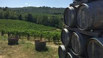 Chianti Classico Tour with Dinner from Lucca, Lucca, Wine Tasting & Winery Tours