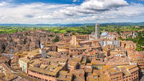 Siena and San Gimignano Small-Group Tour by Minivan from Pisa, Pisa, Bus & Minivan Tours