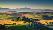 Vinci Chianti Wine and Aperitivo Small Group Tour by Minivan from Lucca, Lucca, Half-day Tours