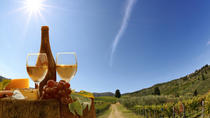 Wine Tasting Tour in the Tuscan's Hills from Pisa, Pisa, Day Trips