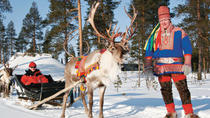 Lapland Reindeer Safari from Rovaniemi Including Sleigh Ride, Lapland, Family Friendly Tours & ...