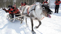 Lapland Reindeer Sleigh Ride to Santa Claus Village from Rovaniemi, Lapland