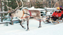 Lapland Snowmobile Safari from Ylläs Including Reindeer Sleigh Ride, Lapland