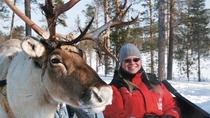 Lapland Snowmobile Safari to a Reindeer Farm from Rovaniemi, Lapland, Ski & Snow