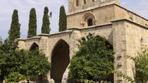 Northern Cyprus Day Trip from Paphos and Limassol, Cyprus, Day Trips