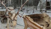 Sami Cultural Tour from Tromso: Reindeer Sleigh Ride, Lavvu Campfire and Optional Northern Lights ...