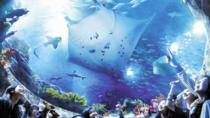 Skip the Line: Hong Kong Ocean Park Admission E-ticket, Hong Kong, Attraction Tickets