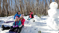 Lake Mountain Alpine Resort Snow Day Trip Including Yarra Valley Food Tasting from Melbourne,...