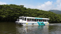 Iriomote Island and Yubu Island Tour with Optional Underwater Boat Tour, Okinawa, Day Trips