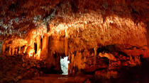 Harrison's Cave and Animal Flower Cave Adventure, Barbados, Half-day Tours