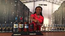 Harrison's Cave and Mount Gay Rum Combo Tour, Barbados, Half-day Tours