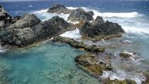 Aruba Shore Excursion: 4x4 Tour and Natural Pool Snorkeling, Aruba