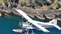 Waiheke Island Lunch or Dinner by Seaplane from Auckland, Auckland, Air Tours