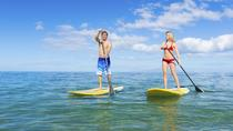 Stand-Up Paddleboard Lesson and Snorkeling in Kaneohe Bay, Oahu, Other Water Sports