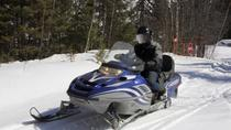 Rocky Mountains Snowmobile Tour: Backcountry Adventure, Denver, Ski & Snow