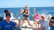 Private Half-Day Yacht Charter in Antigua, St John's, Private Tours