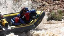 Cataract Canyon Rafting Adventure from Moab, Moab