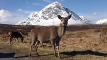 Glencoe, Loch Ness and The Highlands Tour from Edinburgh , Edinburgh, Day Trips