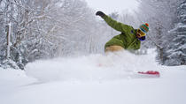 2-Night Mount Snow Ski Trip from New York City, New York City