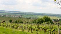 Private Wine and Sightseeing Tour with One-Way Bratislava Transfer, Budapest, Private Tours