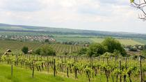 Private Wine and Sightseeing Tour with One-Way Budapest - Bratislava Transfer, Budapest, Private...