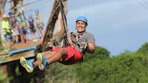 Maui Zipline Tour on the North Shore, Maui, Ziplines