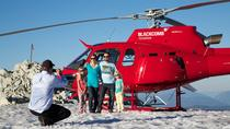 Whistler Alpine Picnic Helicopter Tour, Whistler, Helicopter Tours