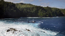 Maui Circle-Island Helicopter Tour, Maui, Sightseeing & City Passes