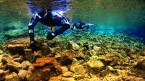 Snorkeling in Thingvellir National Park and Whale Watching Cruise from Reykjavik, Reykjavik, Bike & ...