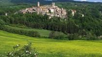 Chianti Wine Tasting with Tuscan lunch, Florence, Day Trips
