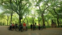 Small-Group Bike Tour of Central Park, New York City, Bike & Mountain Bike Tours