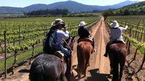 Casablanca Wine Tour and Horse Riding from Santiago, Santiago, Day Trips