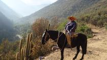 Horse Riding Tour in The Andes from Santiago, Santiago, Horseback Riding