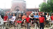 Old Delhi Group Tour by Rickshaws, New Delhi, Private Day Trips