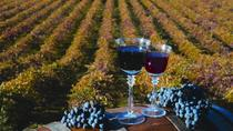The Ultimate Wine Lovers Day Trip to Napa and Sonoma, San Francisco, Wine Tasting & Winery Tours
