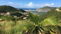 Shore Excursion: St Maarten Beach, Sightseeing and Shopping Tour, Philipsburg, Ports of Call Tours