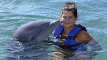 Freeport Dolphin Encounter, Freeport, Swim with Dolphins