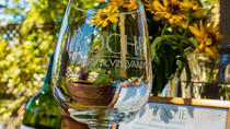 City and Wine: Half Day Sonoma Wine Tour plus Downtown Tour Hop on Hop off, San Francisco, Half-day...