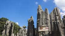 Private Day Tour of Stone Forest from Kunming, Kunming, Private Sightseeing Tours