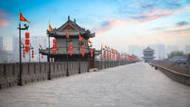 Xian Private 2-Day Tour of Highlights and Terracotta Warriors without Hotel, Xian, Private ...