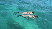 Nassau Reef Snorkeling Adventure, Nassau, Day Cruises