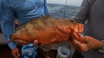 Private Light Tackle Fishing Charter from Nassau, Nassau, Fishing Charters & Tours