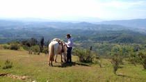Escape Santiago Horseback Ride with Barbecue in the Hills, Valparaíso, Multi-day Tours