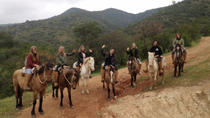 Horseback Riding and Ranch Day Trip with Lunch from Valparaiso, Valparaiso