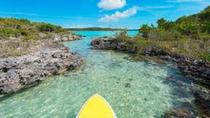 Guided Stand Up Paddleboard Tour Through Mangrove Estuaries, Providenciales, Other Water Sports