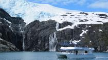Prince William Sound Surprise Glacier Cruise, Whittier, Day Cruises