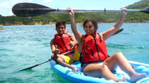 St Thomas Shore Excursion: Snorkel, Kayak and Turtle Discovery with Honeymoon Beach, St Thomas,...
