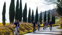 Full Day Tuscan Countryside Bike Tour, Florence, Bike & Mountain Bike Tours